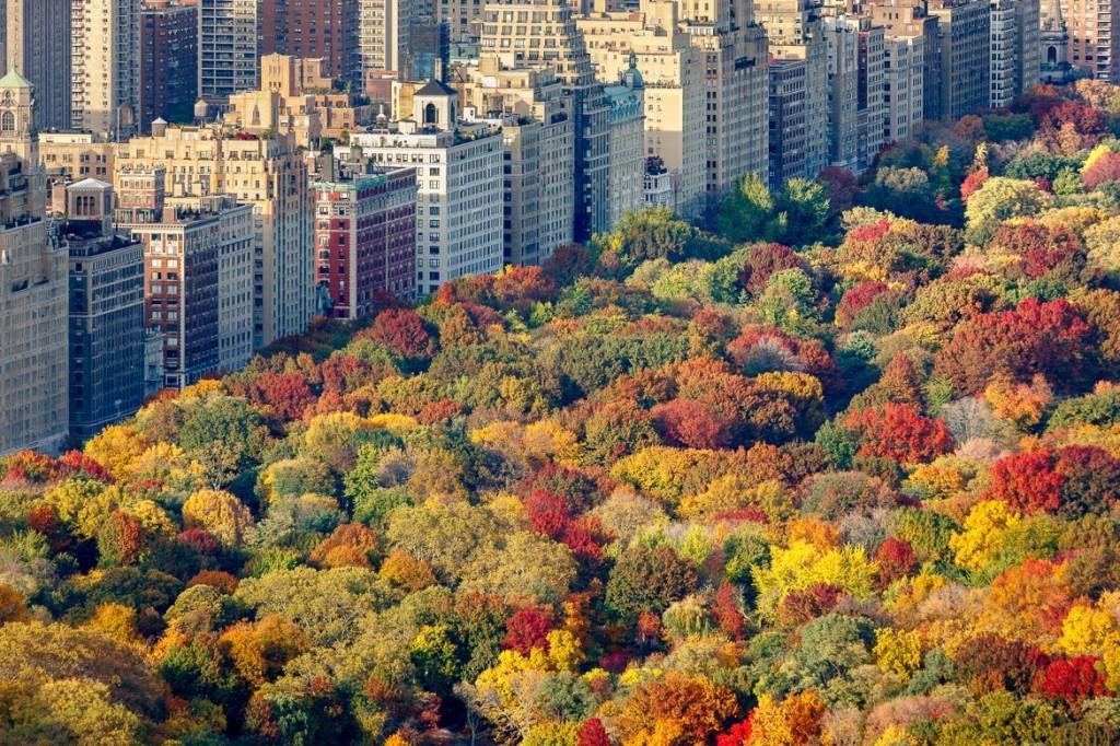 Thanksgiving-family-vacation-rentals-fall-foliage-1024x682