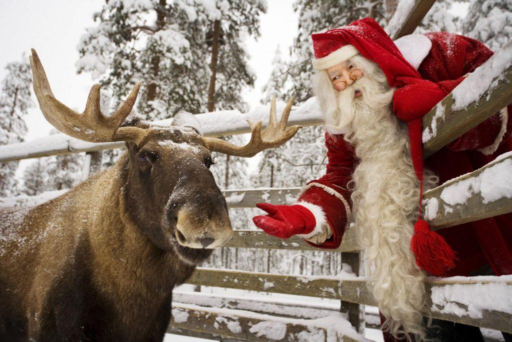 ranua_zoo_santa_elk